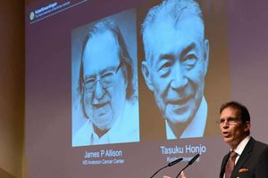 Mỹ, Nhật chia giải Nobel Y học
