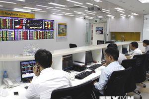 Chính phủ huy động 20.800 tỷ đồng qua kênh đấu thầu trái phiếu