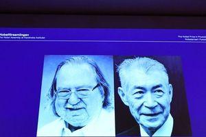 Nobel Y học 2018: Cơ hội mới cho bệnh nhân ung thư?