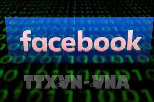 EU cảnh báo Facebook đang yếu kém trong quản lý thông tin