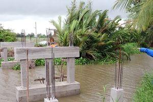 Xã nghèo xây cầu hàng trăm triệu đồng chỉ để bắc qua… bờ đê trồng chuối