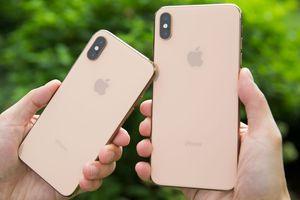 Bỏ 29 triệu mua iPhone XS Max, nhận được máy mô hình