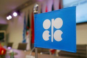 OPEC dường như đang bất lực để ngăn giá dầu leo lên mức 100 USD/thùng