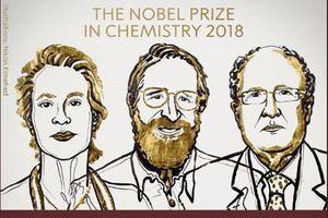 Người tiên phong đưa 'nguyên tắc Darwin vào trong ống nghiệm' giành Nobel Hóa học 2018
