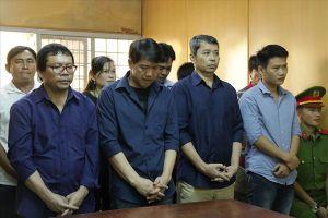 Trùm đường dây logo xe vua lãnh 14 năm tù