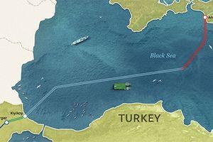 Nga tăng đầu tư cho dự án Dòng chảy Thổ Nhĩ Kỳ