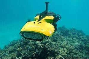 RangerBot: Robot diệt sao biển gai ăn thịt san hô