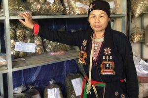 'Thần y Tản Viên Sơn' nắm giữ 'kho báu' khổng lồ về thuốc Nam duy nhất ở Việt Nam