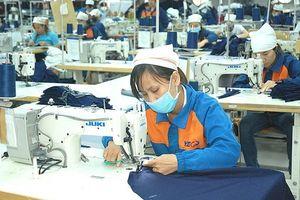Tình hình lao động việc làm: Chuyển biến khả quan