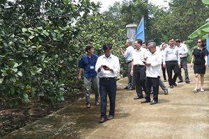 Đoàn công tác tỉnh Quảng Nam học tập kinh nghiệm xây dựng NTM tại Thống Nhất