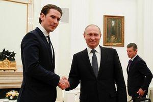 Tổng thống Putin khẳng định Nga, Syria không tấn công Idlib trong tương lai gần