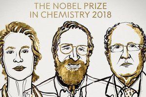 Nobel Hóa học 2018 vinh danh nghiên cứu về enzyme