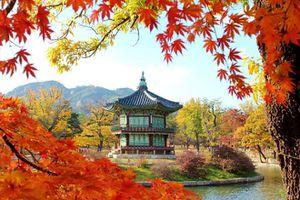 Không có đơn xin nghỉ phép có xin được visa Hàn Quốc?