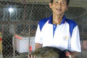 Thầy giáo nghèo đổi đời nhờ nuôi chim quý hiếm như nuôi gà