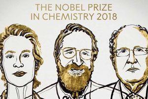 Giải Nobel Hóa học cho khám phá về tiến hóa và enzyme