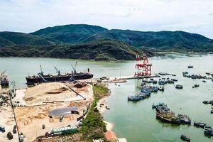 Cảng Quy Nhơn: Cần mô hình quản trị mới để miền Trung 'cất cánh'