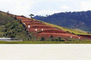Xử lý các vụ san ủi đất trái phép xâm hại hồ Suối Vàng