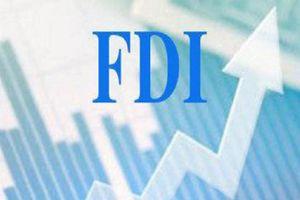 FDI giữ vai trò quan trọng trong phát triển kinh tế của Việt Nam