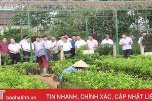 Hà Giang ấn tượng với khu dân cư kiểu mẫu Hà Tĩnh
