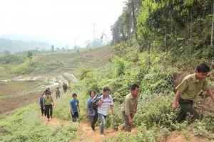 Hiệu quả từ chính sách chi trả dịch vụ môi trường rừng ở Yên Bái