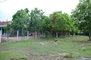 Bồi thường đất vườn hay đất thổ cư?