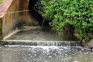 Người dân tố trạm xử lý nước thải công nghiệp xả nước ô nhiễm ra môi trường