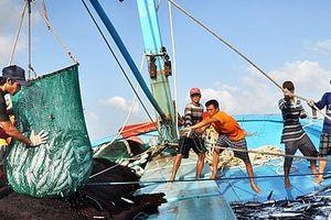 Không để tàu cá Việt Nam đi khai thác trái phép ở vùng biển nước ngoài