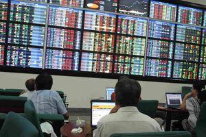 7 cổ phiếu tạm dừng giao dịch do chậm công bố báo cáo tài chính soát xét