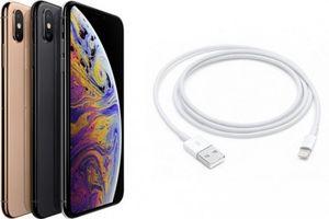 Bản thử nghiệm iOS 12.1 beta sửa lỗi sạc pin trên iPhone mới