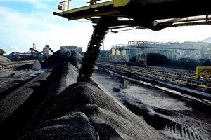 Nhập khẩu than vào Việt Nam tăng mạnh