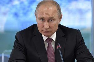 Tổng thống Putin đề nghị các lực lượng nước ngoài, bao gồm Nga rút khỏi Syria