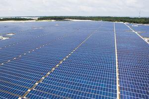 Khánh thành nhà máy điện mặt trời 35 MW đầu tiên tại Việt Nam