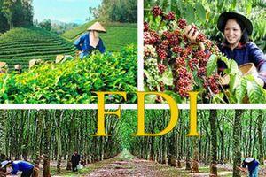 FDI trong lĩnh vực nông - lâm - ngư nghiệp chỉ chiếm 1,01%