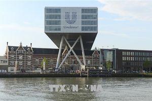 Vấn đề Brexit: Unilever từ bỏ kế hoạch rời London tới Rotterdam
