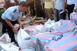 Phát hiện vụ buôn lậu lớn chưa từng có ở Đà Nẵng: 8 tấn ngà voi và vẩy tê tê trong 200 bao hạt nhựa