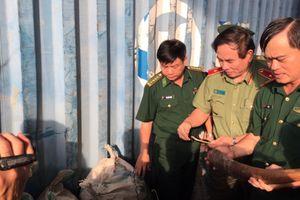 Đà Nẵng: Phát hiện 10 tấn ngà voi, vẩy tê tê nhập lậu tại Cảng Tiên Sa