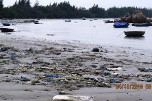 Quảng Ngãi: Rác thải ngập ngụa vịnh Dung Quất