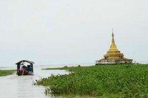 Kế hoạch chiến lược vùng đất ngập nước khu vực Indo-Burma