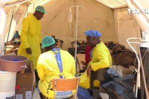Zimbabwe nỗ lực ngăn chặn dịch bệnh tả