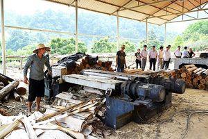 Thanh Hóa: Hỗ trợ thiết thực cơ sở công nghiệp nông thôn