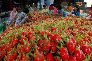 Xuất khẩu thực phẩm vào Mỹ: Khó từ những quy định khắt khe