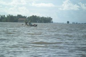 Mực nước sông Cửu Long sẽ lên theo triều