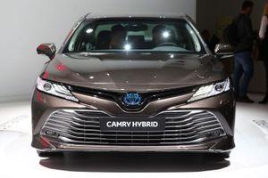 Toyota Camry Hybrid trở lại châu Âu sau 14 năm vắng bóng