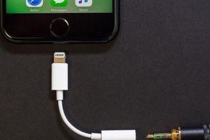 Những lỗi trên iPhone XS và XS Max khiến người dùng 'điên đầu'