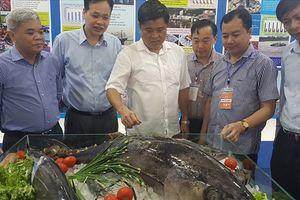 Thỏa sức nếm thử miễn phí các món ăn ngon, độc, lạ tại hội chợ thủy sản
