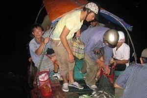 Đi câu đêm ở Cát Bà không vì mục đích lấy cá