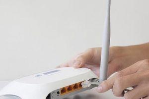 TP.HCM: Nhiều thuê bao bị 'đứt gánh' internet do nhà mạng kéo cáp 'chui'?