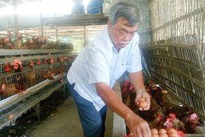 U.70 làm giàu từ chăn nuôi