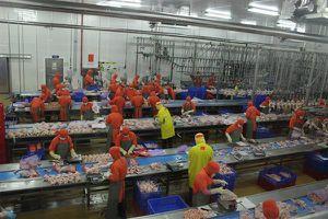 Viện trưởng CIEM tiết lộ lí do doanh nghiệp Việt không muốn lớn