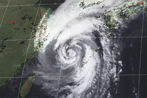 Hàng trăm chuyến bay tại Hàn Quốc phải hủy do bão Kong-rey